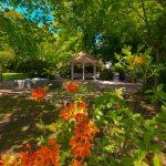Evergreen Arboretum